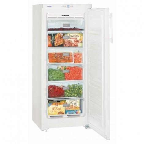 Liebherr GNP2313 Freezer