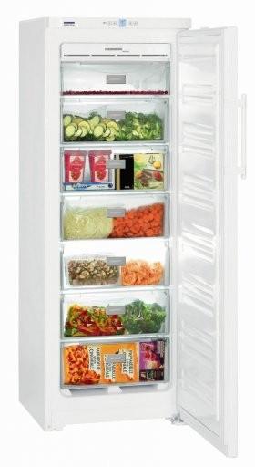 Liebherr GNP2713 Freezer